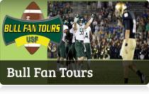 Bull Fan Tours